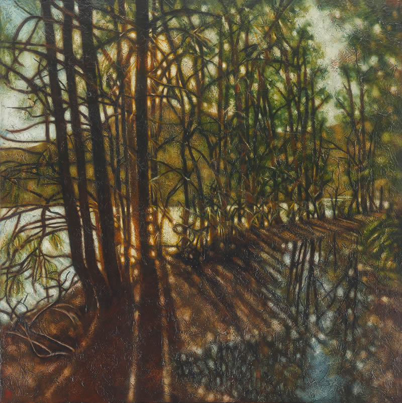 Paintings - Afternoon light. Garigal lyrebird track